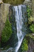 Small water fall with blurred water and moss poster