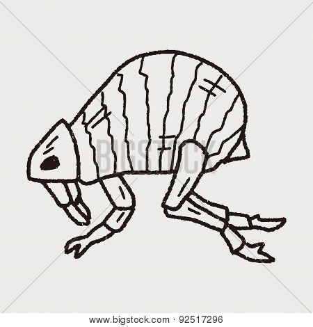 Flea Doodle