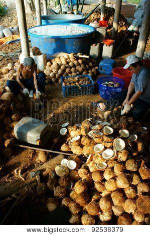 Asian Worker, Coconut, Copra, Material, Mekong Delta