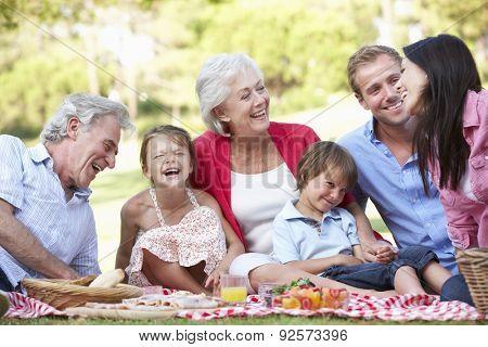 Multi Generation Family Enjoying Picnic Together poster