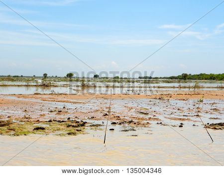 flooded scenery at the Tonle Sap river in Cambodia