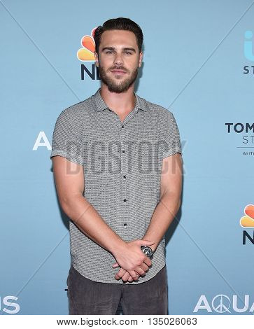 LOS ANGELES - JUN 16:  Grey Damon arrives to the