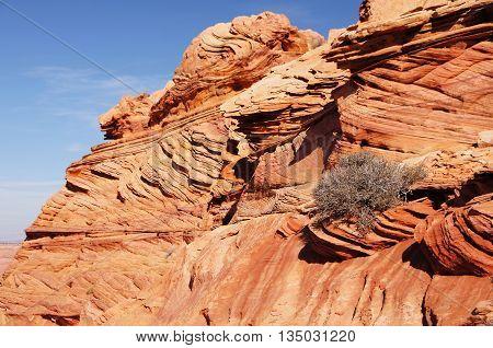 The Wave, Vermilion Cliffs National Monument, Arizona, Usa