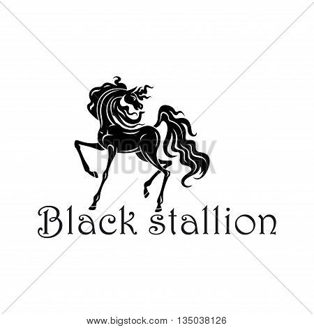 Young andalusian colt black silhouette with elegant curved neck, raised foreleg and thick curly mane and tail. Great for horse show, dressage symbol or horse breeding farm theme design