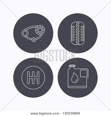 Wheel, manual gearbox and timing belt icons. Fuel jerrycan, manual transmission linear signs. Flat icons in circle buttons on white background. Vector