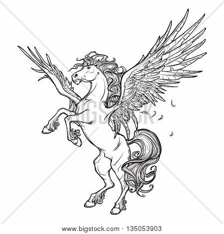 Pegasus greek mythological creature. Legendary beast concept drawing. Heraldry figure. Vintage tattoo design. Sketch isolated on a white background. EPS10 vector illustration. poster