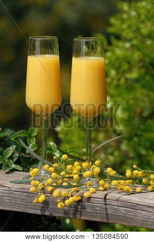 Two glasses of mimosa cocktail outdoors against lush foliage poster