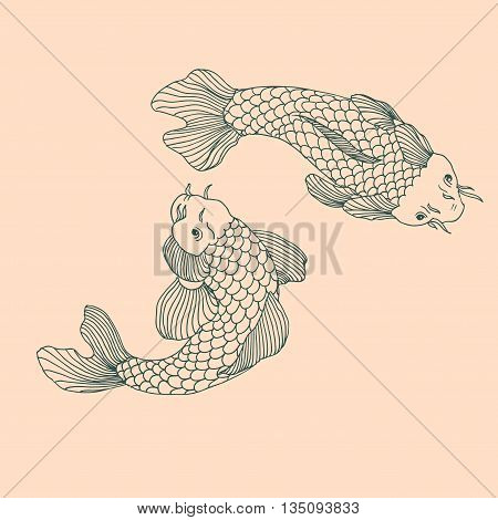 Catfish fish image. Hand drawn vector stock illustration. Vintage grunge drawing