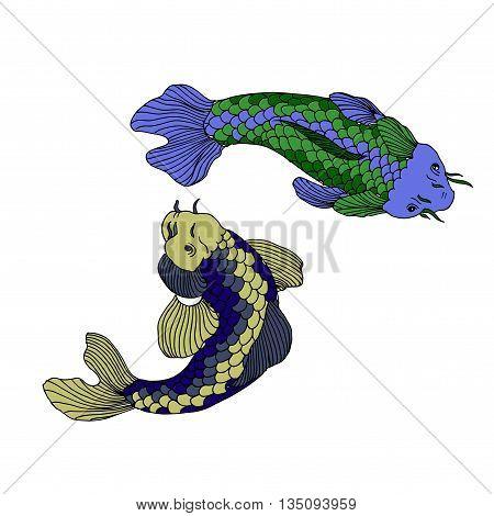 Catfish fish image. Hand drawn vector stock illustration.