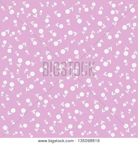 lilac flower background. Floral pattern. Abstract image