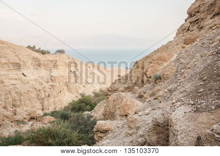 Canyon In En Gedi Nature Reserve And National Park, Israel