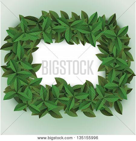 green big leaves frame, lush leaf frame illustrations