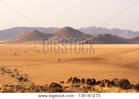 Scenery On The Travel From