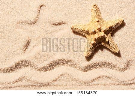 Starfish, Mark Of Starfish And Mark Of Wave On Sand