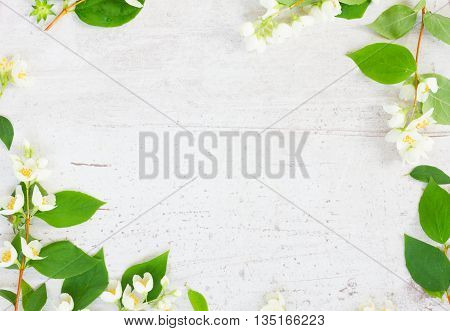 Jasmine fresh flowers and leaves flat lay scene on wooden table