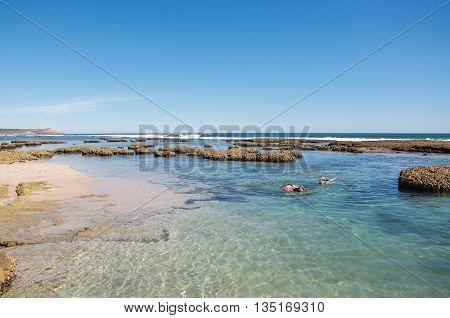 KALBARRI,WA,AUSTRALIA-APRIL 21,2016: People snorkelling at the Blue Holes beach viewing the underwater reef and rock pools in the Indian Ocean waters on the coral coast in Kalbarri, Western Australia.