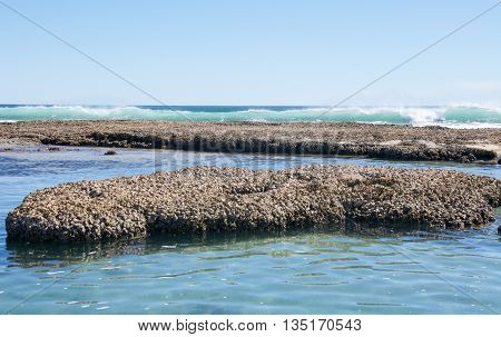 Rock pools and turquoise Indian Ocean waves on a clear day at Blue Holes beach in Kalbarri, Western Australia.
