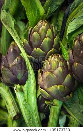 Highly detailed image of fresh artichokes at farmers market