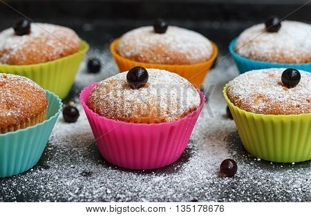 Muffins with black currant in silicone forms sprinkled with powdered sugar