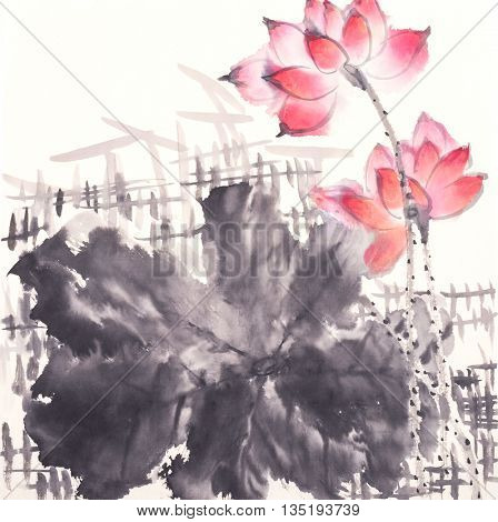 lotus of Traditional Chinese Painting