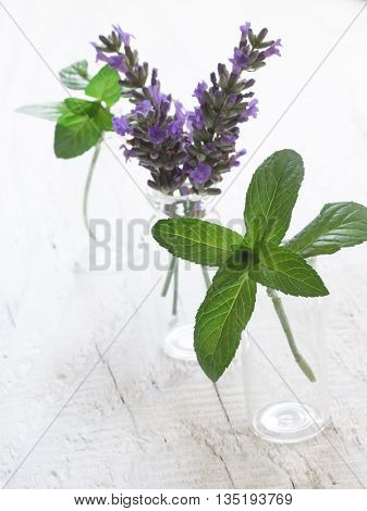 mint and lavender in the glass bottles