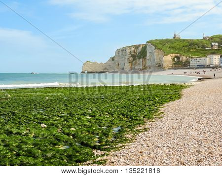 The coast of English Channel in outflow and famous cliff La Falaise d'Amont. . Etretat, Normandy, France