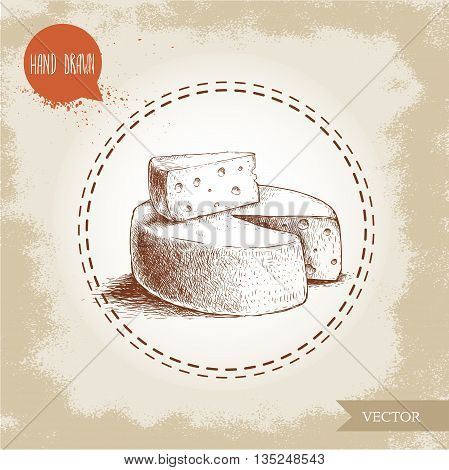 Hand drawn head of cheese and triangle piece of cheese. Vector organic food illustration. Vintage design.