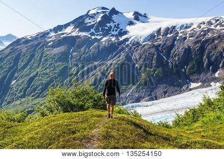 Exit Glacier, Kenai Fjords National Park, Seward, Alaska poster