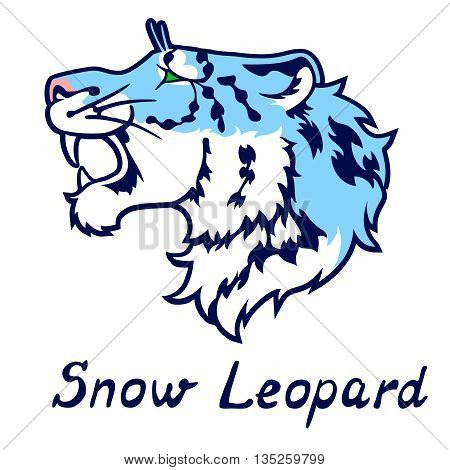 The growling snow leopard in a profile - blue variant. Snow leopard - a beautiful but rare big cat of Asian mountains.