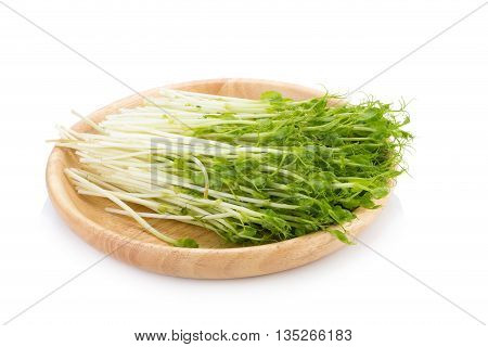 green pea sprouts fresh green pea sprouts Snow Pea Sprouts on White Background
