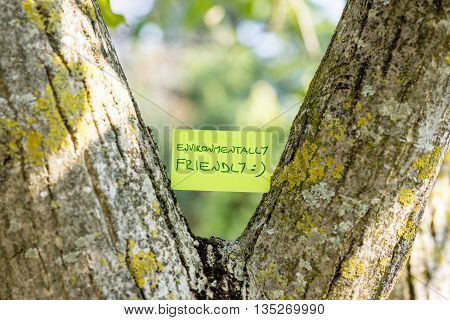 Green piece of paper reading Environmentally friendly stuck in between a tree trunk that grows in a Y shape.