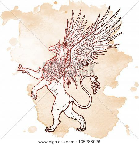 Griffin, griffon, or gryphon legendary creature from Greek mythology. Sketch on a grunge beckground. Vintage design. EPS10 vector illustration. poster