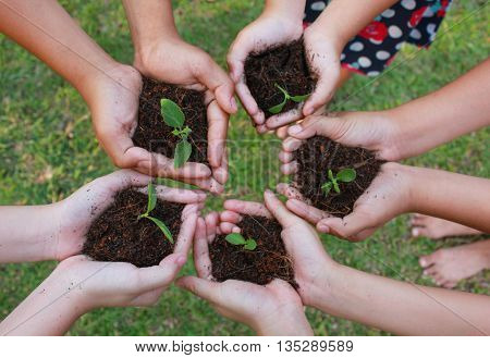 Hands holding sapling in soil surface on green grass background.