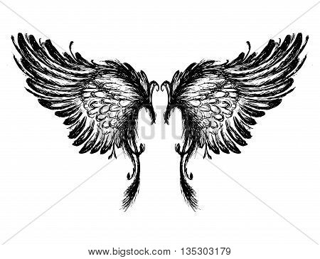 Wings isolated on white background, hand drawing, vector illustration