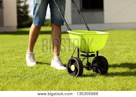Picture of young man seeding grass in the backyard
