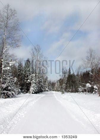 Private Snowy Road