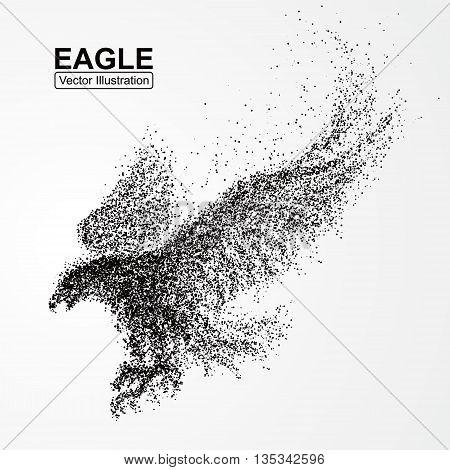 Eagle wings,  Divergent particles, composition, vector illustration.