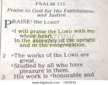 Praise The Lord