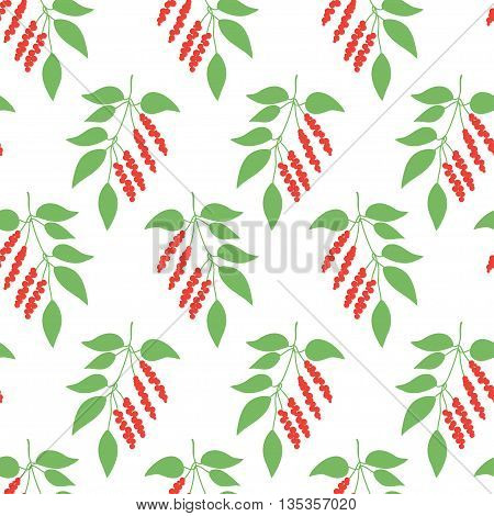 Seamless pattern green leaves of Chinese Schisandra . Floral background. Vector illustration.
