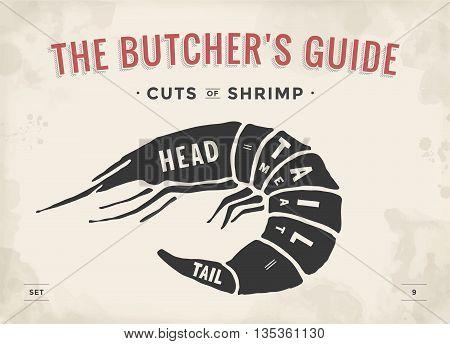Cut of meat set. Poster Butcher diagram and scheme - Shrimp. Vintage typographic hand-drawn visual guide for butcher shop. Vector illustration