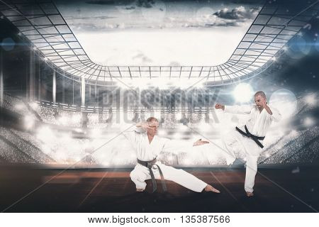 Fighter performing karate stance against overhead view of playing field