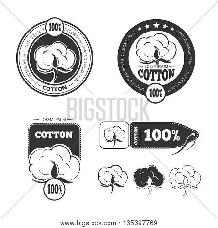 Cotton vintage vector logo, labels and badges set. Cotton label, badge cotton, vintage cotton logo illustration