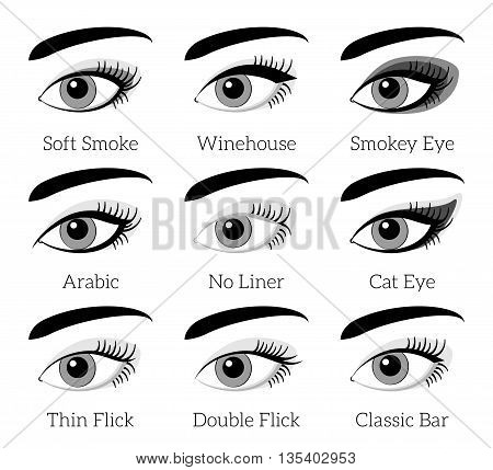 Eye makeup types. Vector infographic. Makeup eyelash, beauty makeup female, cosmetic fashion makeup eyebrow, closeup makeup eyelid illustration