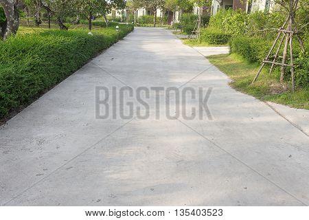 concrete road, concrete walk way, concrete road in a garden.