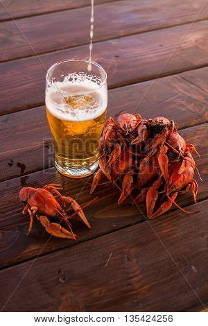 Full glass of beer with boiled crawfish on the table poster