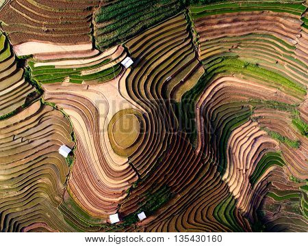 Terraced rice field in water season from drone in Mu Cang Chai, Vietnam.