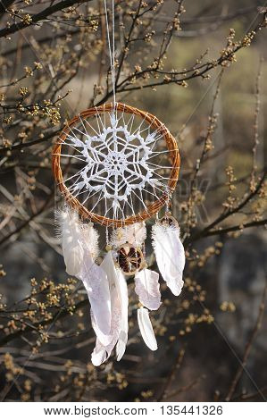Handmade native american dream catcher on background of spring branch. Tribal elements feathers lace crochet snowflake doily