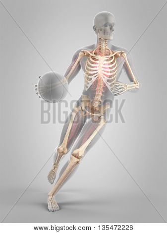3d rendered, medically accurate 3d illustration of basketball player