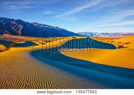 Woman in striped shirt photographing sand waves. Bright sunny morning in a picturesque part of Death Valley, USA. Mesquite Flat Sand Dunes