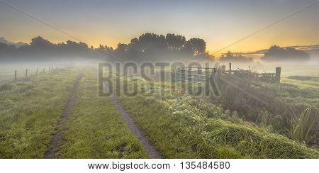 Foggy Farmland With Dirt Track